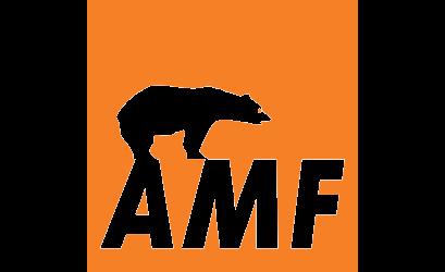 KNAUF AMF SISTEMAS DE TECHOS SL
